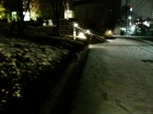 snow@night