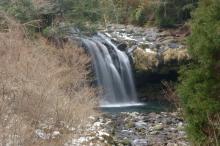 黄金の滝(スロー)
