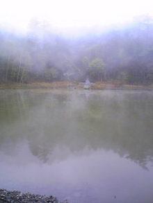 Image424.jpg