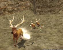 鹿さんを救え!