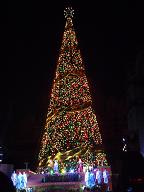 USJのクリスマスツリー2