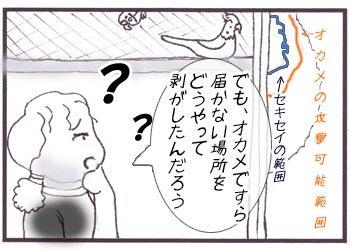 鳥四コマ漫画