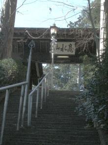 ぽれぽれカエルが雨に鳴く-takamizu06
