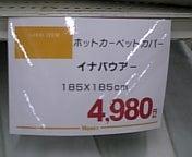 061128_175308.jpg