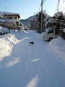 '06-山形雪道3
