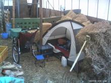 テントと干草