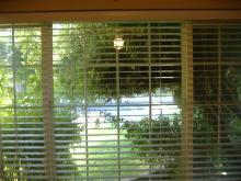 俺の部屋の窓からみた外の景色