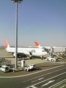 JAL2007