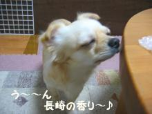 長崎の香り