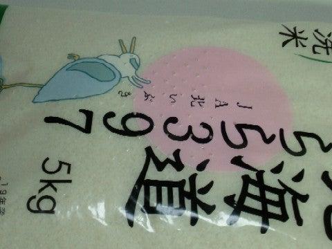 米の保存7