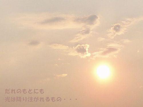 551Hikari