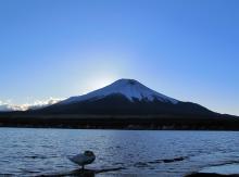 淡粧 ~競馬よ今宵も有難う~-富士山