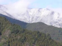 虫食い林檎と車のある風景-奥多摩雪1