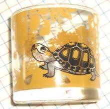 みのじのオミセ セマルハコガメロックグラス