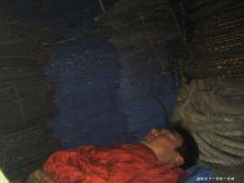 網置き場で眠る