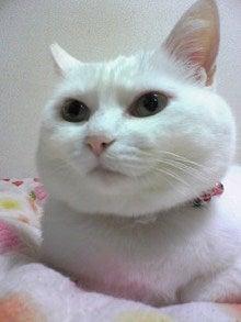 クゼリのブログ-Image1217.jpg
