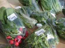 まごころ農園 まんさい市場-野菜