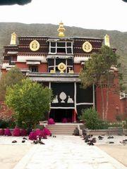 お寺の学校