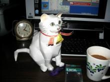 我が家の猫ミミ子