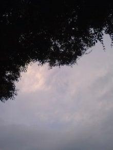 080619_1900~01.jpg