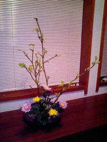5月の生け花