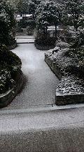 大阪に雪~♪