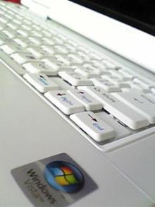 Image366.jpg