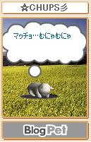 ☆CHUPS彡マッチョ2.PNG