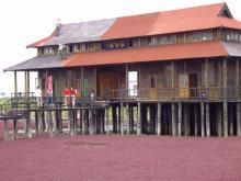 紅海灘11