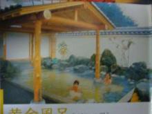 南平台温泉13