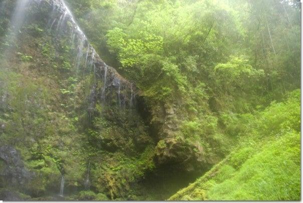 うなぎ滝4