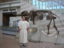 ゾウと古代人