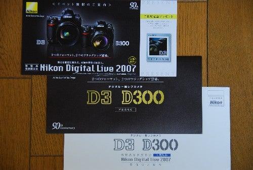 D3 D300