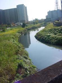 川口元郷071115024