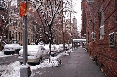 ニューヨークの天丼はうまかった?! ★♪☆ 店長Naomiとスタッフのマンハッタン買い付け日記 ☆♪★-snow3