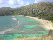なつブロ-ハワイ