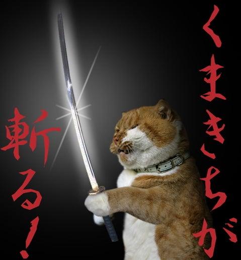 スコ猫くまきち日和+-くまきちが斬る! シャキーン