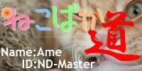 プリザーブドフラワー cafe de la fleur Amedeo(フラワーカフェ アメデオ)のブログ/花とcafeとネコたちと・・・・-ねこばか道