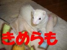 のほほ~ん動物園-250