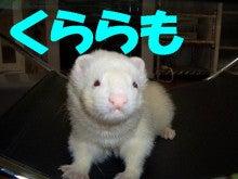 のほほ~ん動物園-251