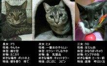 as.milk saki blog-saki blog top