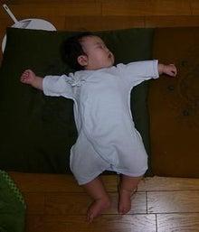 Grumpy Monkey(不機嫌なおさるさん)の観察日記-sleeping mini2