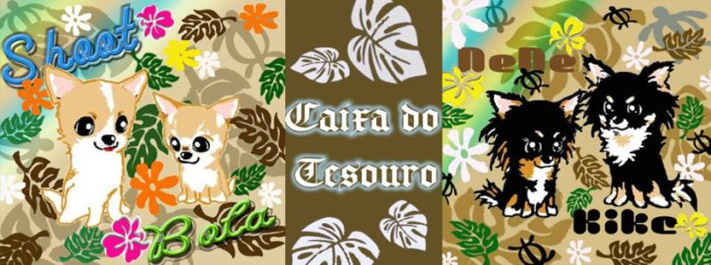 ☆Caixa do tesouro☆