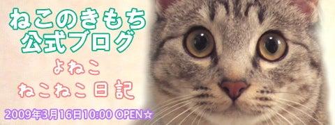 よねこ ねこねこ日記-「ねこきも」公式ブログはコチラ☆