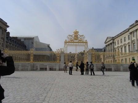 cinnamon log-Versailles-1