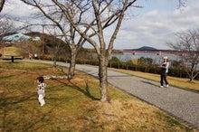 Open!YAMAnDA-浜名湖