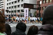 ぽれぽれカエルが雨に鳴く-tokyoM03