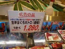 沖縄から遊漁船「アユナ丸」-養殖マグロ
