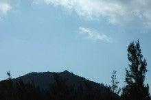 小笠原エコツアー情報 エコツーリズムの島 小笠原旅情報 小笠原の自然-3.26