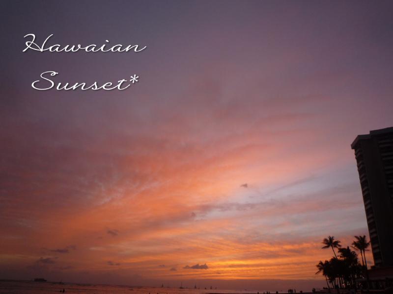 わんグルメ【トイプー♂とカニンヘンダックス♀の毎日】-HAWAII